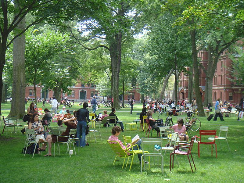 The Chairs in Harvard Yard